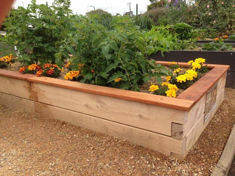 x greenes com walmart ip raised bed fence garden cedar beds